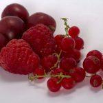Tannini-frutta-pancialeggera