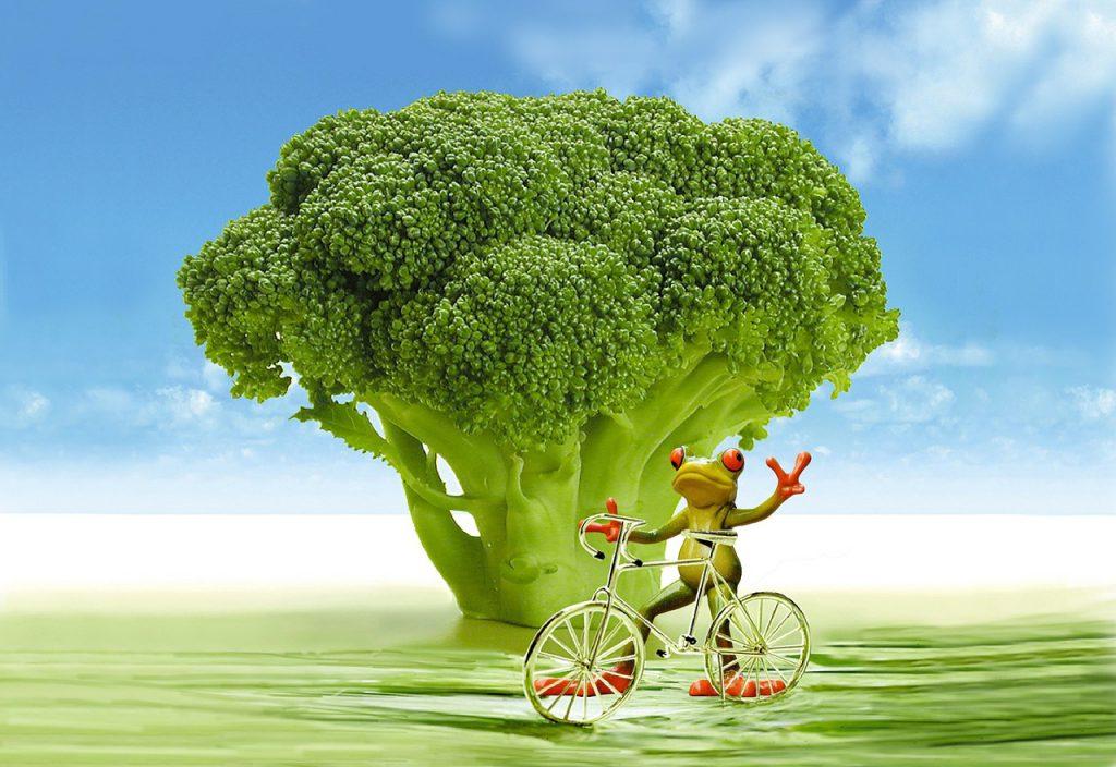 broccoli_metabolismo_pancialeggera