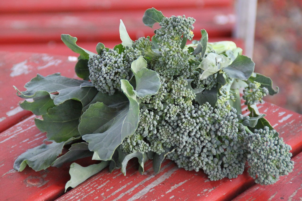 broccoli_proprietà-pancialeggera