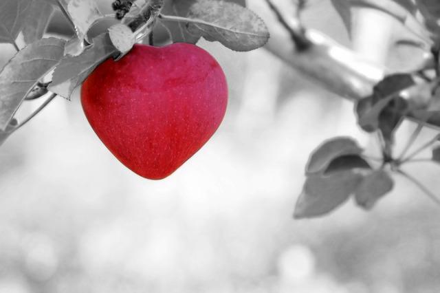 15 alimenti consigliati per il benessere del nostro cuore
