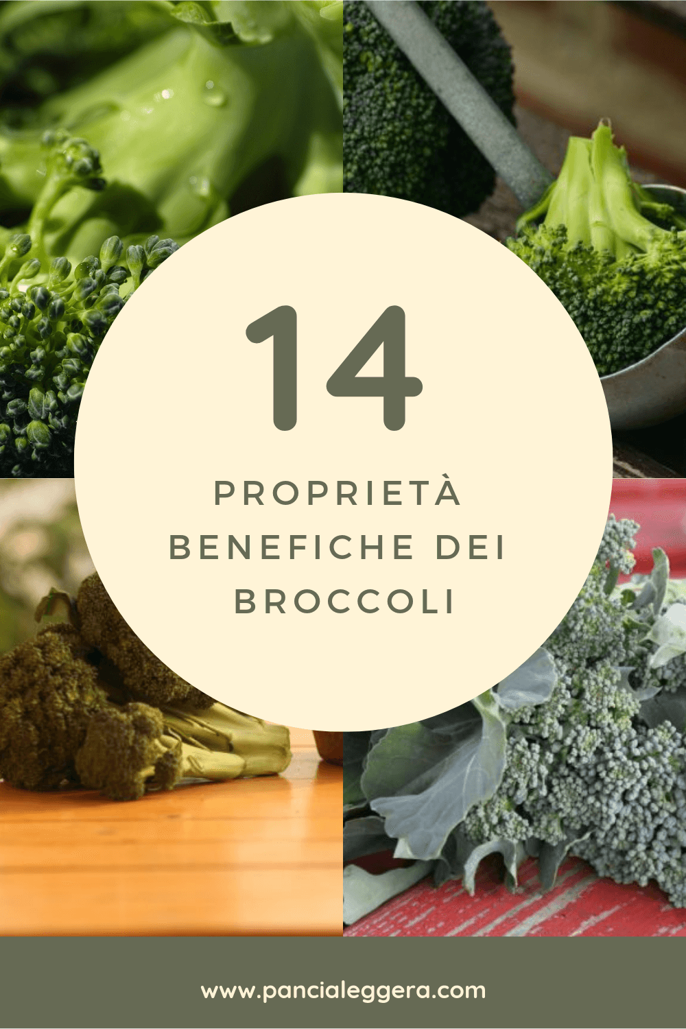 proprietà benefiche dei broccoli
