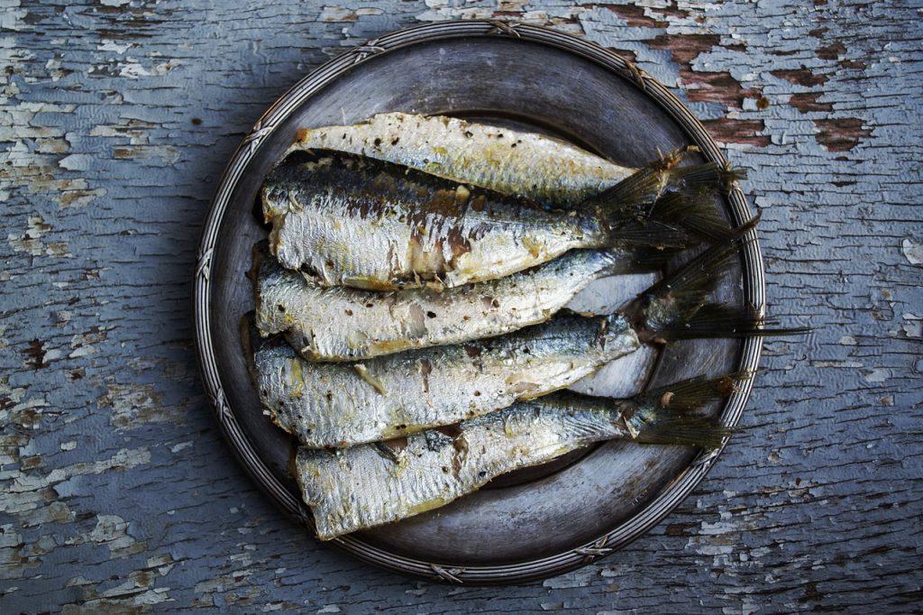 omega3_metabolismo-pancialeggera