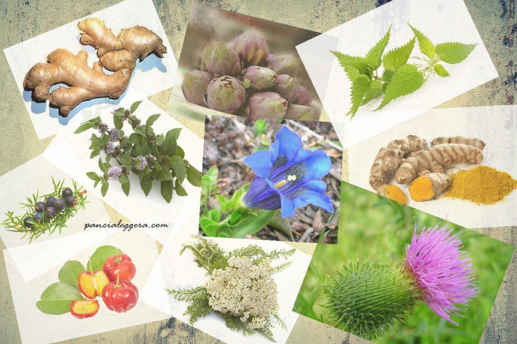 ingredienti-detox-bio-intensivo