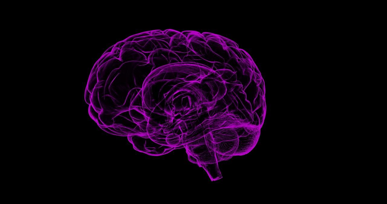 omega-3-cervello-pancialeggera