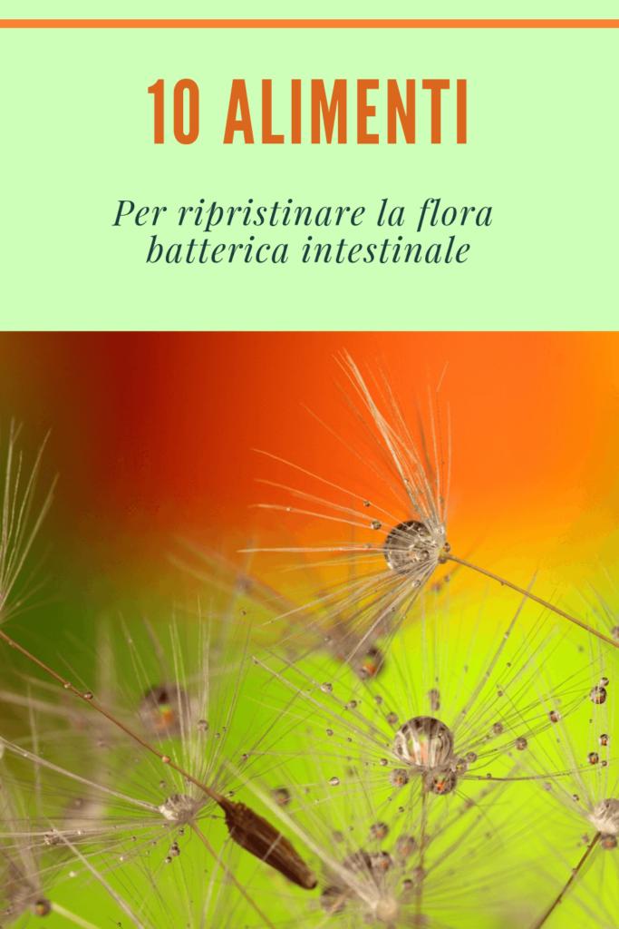 ripristinare velocemente la flora intestinale la migliore dieta mediterranea