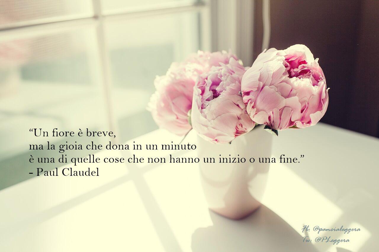 \u201cUn fiore è breve, ma la gioia che dona in un minuto è una di quelle cose  che non hanno un inizio o una fine.\u201d
