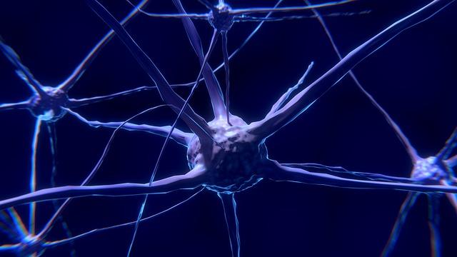 glutammato-monosodico-fa-male-neurotossico-pancialeggera