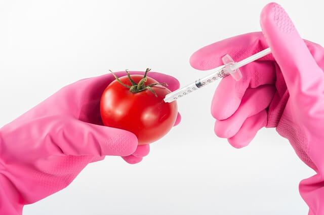 dieta-falsi-miti-da-sfatare-ogm-pancialeggera