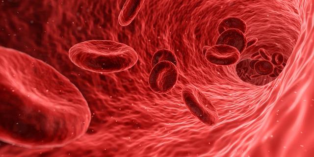 zenzero-anti-colesterolo-pancialeggera
