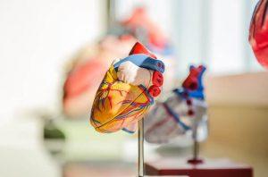 triclosan-effetti-sulla-salute-cuore