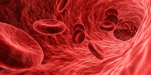 cause-lividi-spontanei-malattie-del-sangue