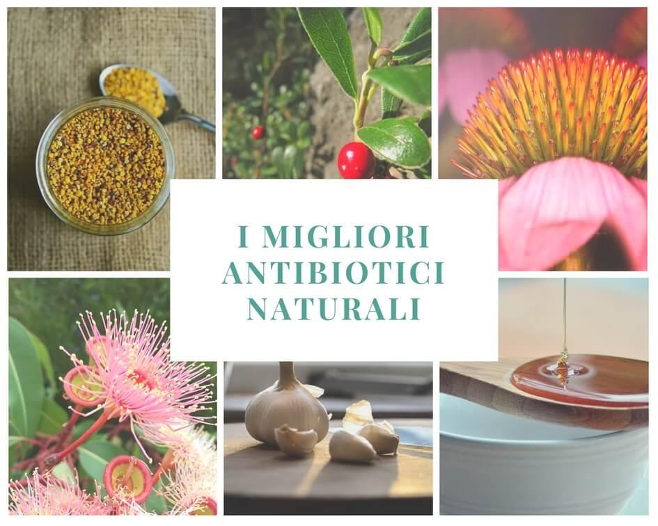 Dal raffreddore alla cistite – i migliori antibiotici naturali ed alcune ricette di rimedi da preparare a casa.