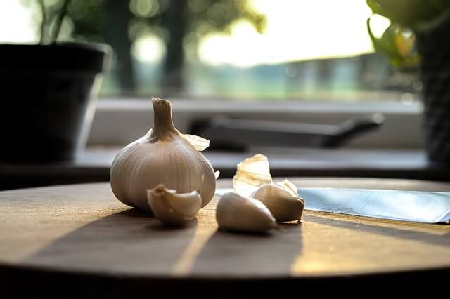 migliori-antibiotici-naturali-aglio
