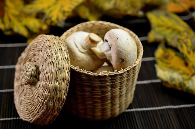 carboidrati-per-dimagrire-funghi
