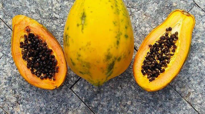 A che serve la papaya fermentata? Benefici, effetti collaterali, controindicazioni e migliori integratori.