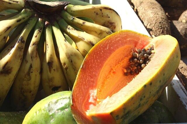 quando-prendere-papaya-fermentata