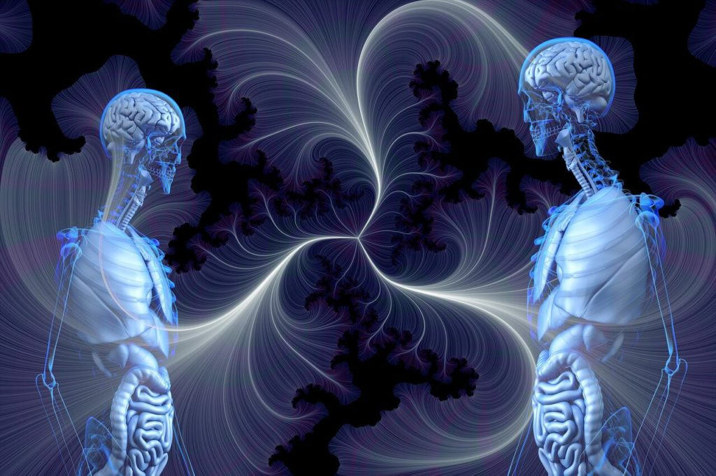 enzimi corpo umano