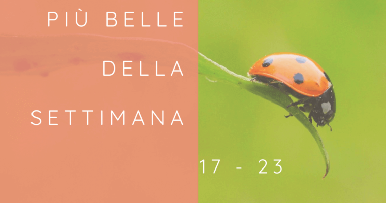 Frasi, aforismi e citazioni più belle della settimana 17 – 23 agosto 2020