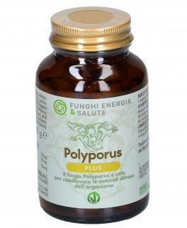 plyporus plus - formula potenziata